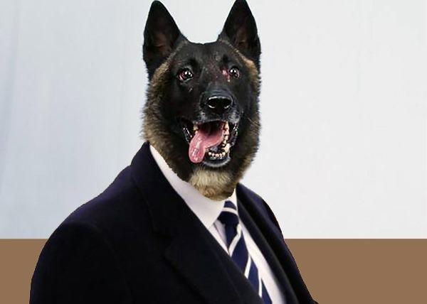 MIDEAST-CRISIS/TRUMP-DOG